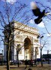 Paris1_2